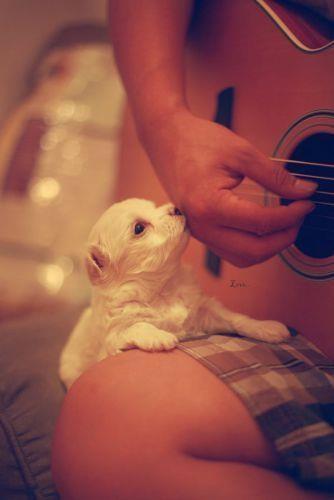 sa iubesti cantecul